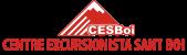 banner-cesboi-blog